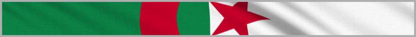 Немногочисленные поисковые системы Алжира в виде поисковиков