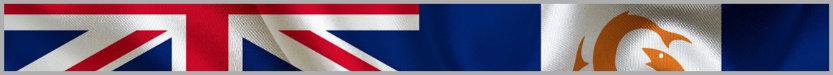 Поисковики и поисковые системы островной Ангильи