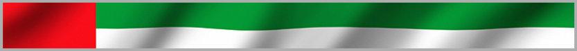 Открытые поисковые системы и поисковики в Арабских Эмиратах
